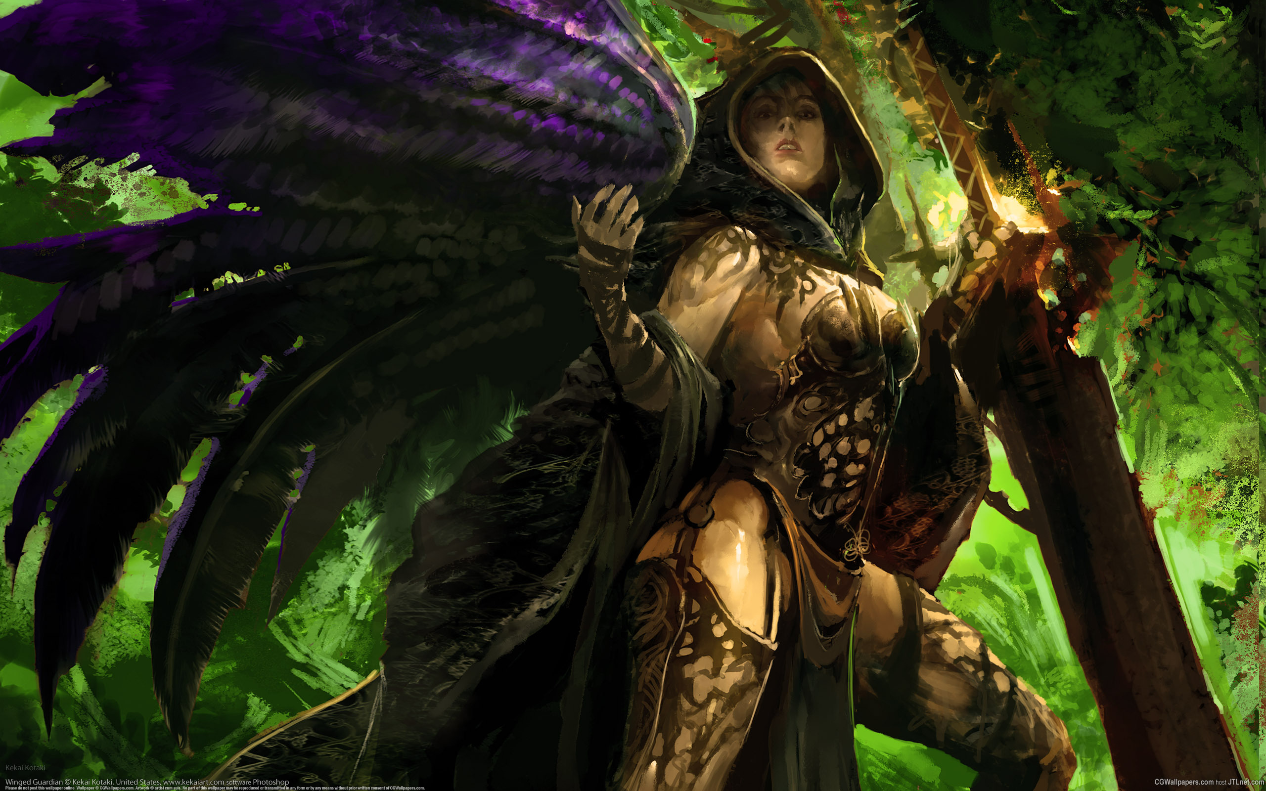 guild wars 2 full hd wallpaper and background 2560x1600
