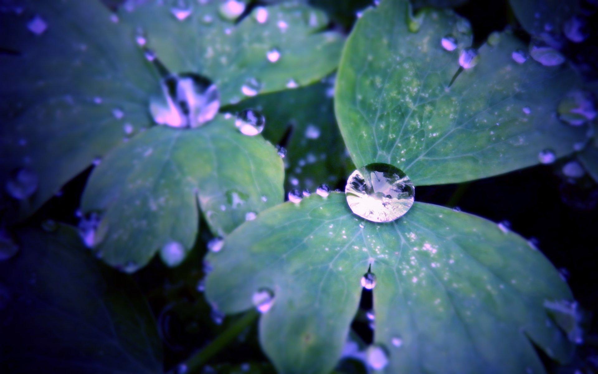 Earth - Water Drop  Wallpaper