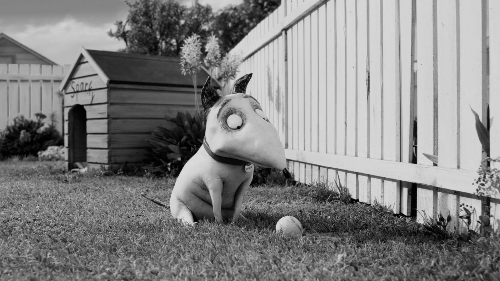 16 Frankenweenie Hd Wallpapers Background Images Wallpaper Abyss