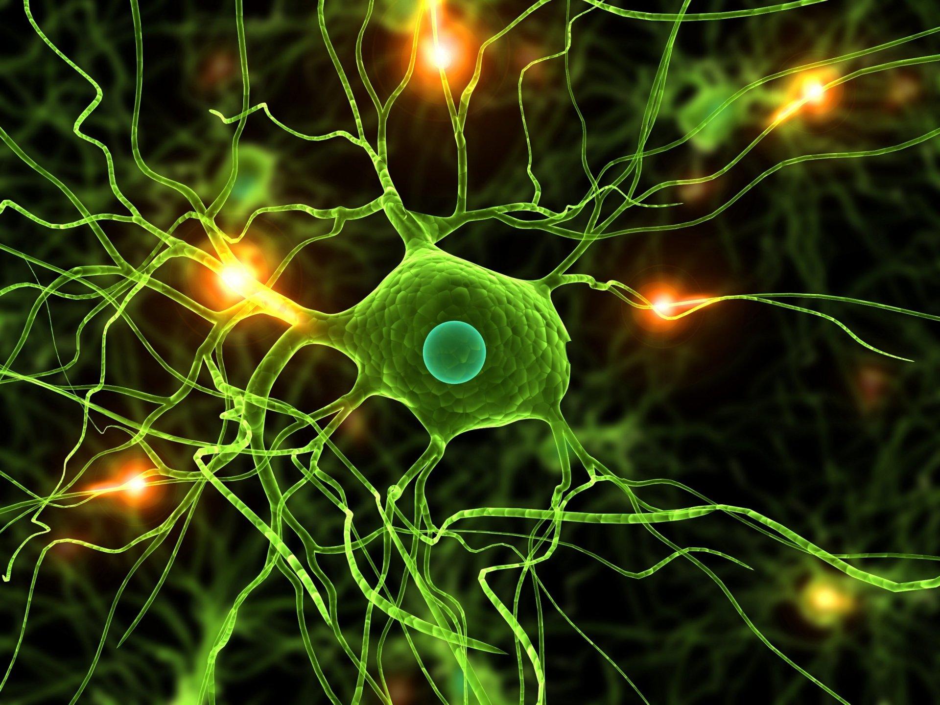 Artistic - Neuron  Wallpaper