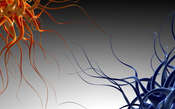 Abstract Cool Colors Pattern Texture Shapes Blown Glass Chihuly HD Wallpaper | Background Image
