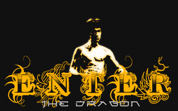 Sports - Martial Arts Wallpapers and Backgrounds ID : 213582