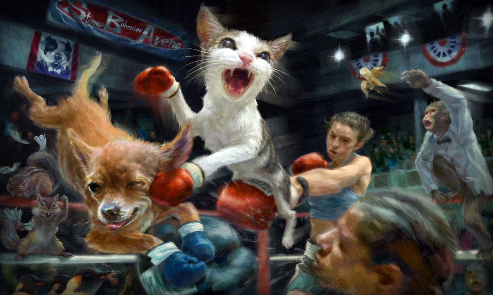 Animal - Artistic  Cat Dog Squirrel Wallpaper