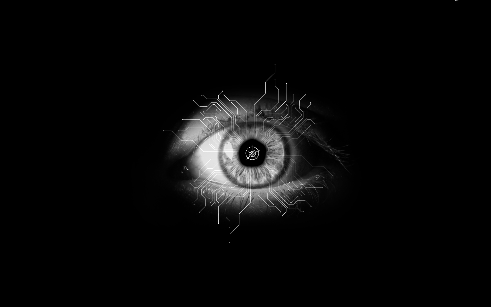 the eye wallpaper