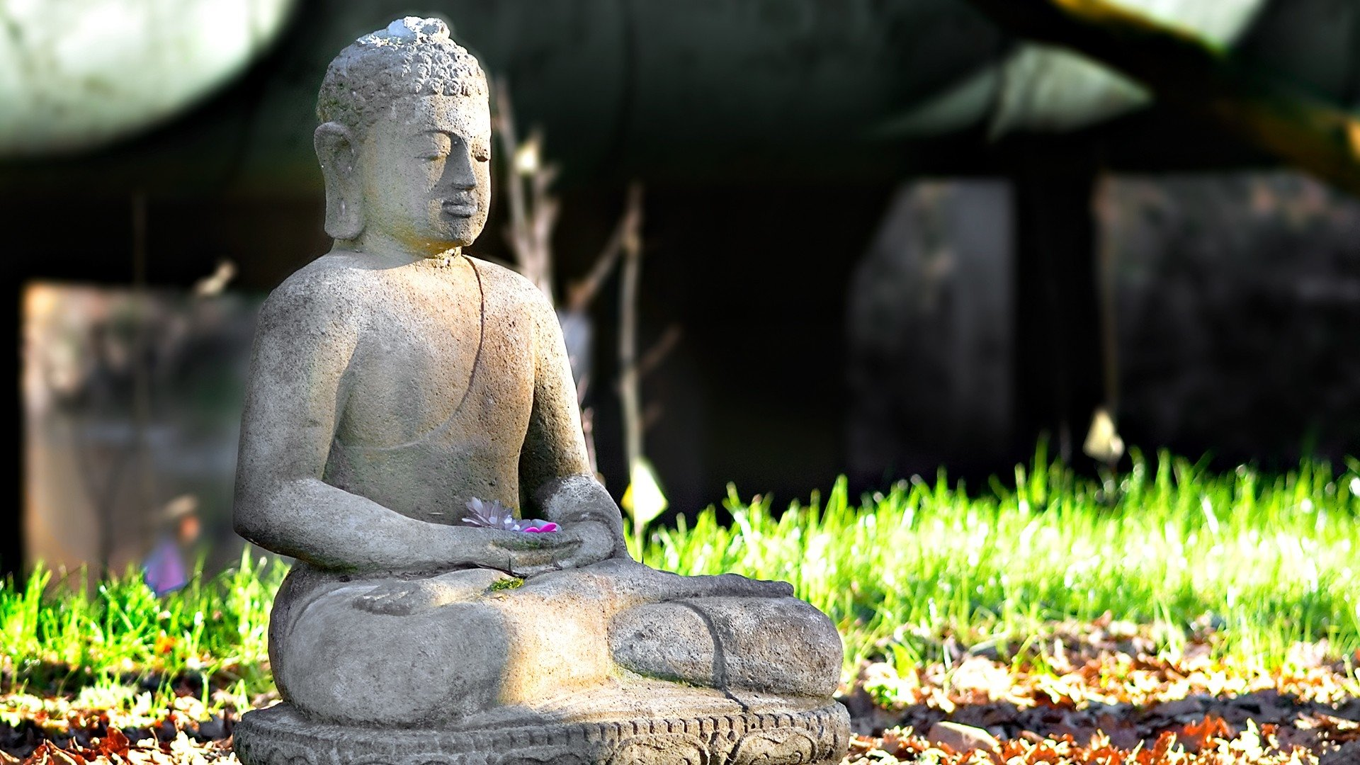 Buddhism Full HD Wallpaper And Background Image