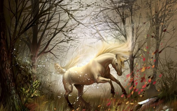 Fantaisie Licorne Animaux Fantastique Forêt Fond d'écran HD | Arrière-Plan