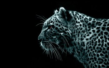 Animal - Artistic Wallpapers and Backgrounds ID : 225390