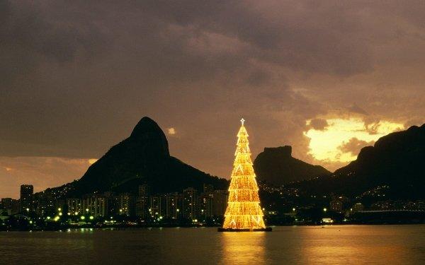 Holiday Christmas Christmas Tree Rio de Janeiro Brazil HD Wallpaper | Background Image