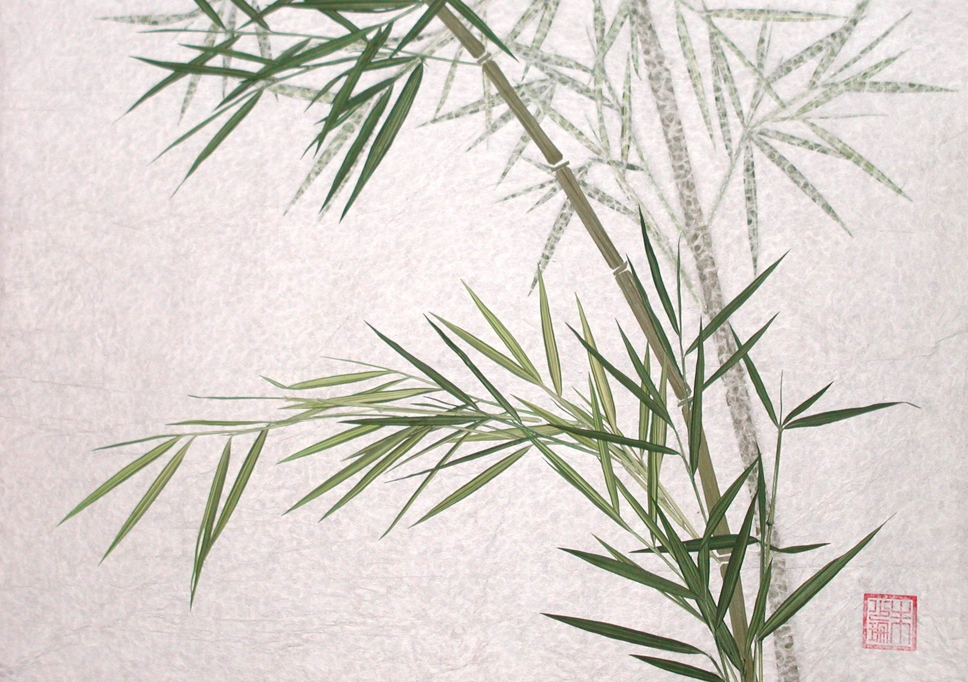 Bamboo Hd Wallpaper Background Image 1992x1404 Id 226020 Wallpaper Abyss