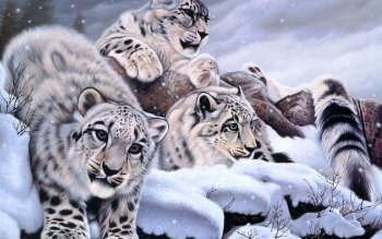 Artistic - Animal Wallpapers and Backgrounds ID : 232152