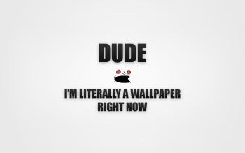 Comico - Funny Wallpapers and Backgrounds ID : 234410