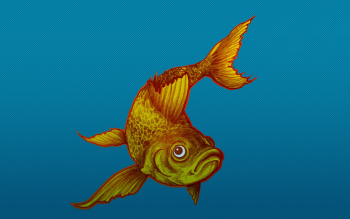 Animal - Fish Wallpapers and Backgrounds ID : 234650
