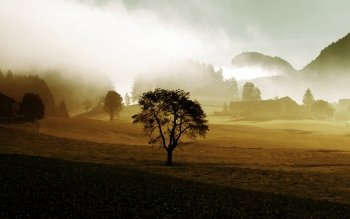 Earth - Fog Wallpapers and Backgrounds ID : 234690
