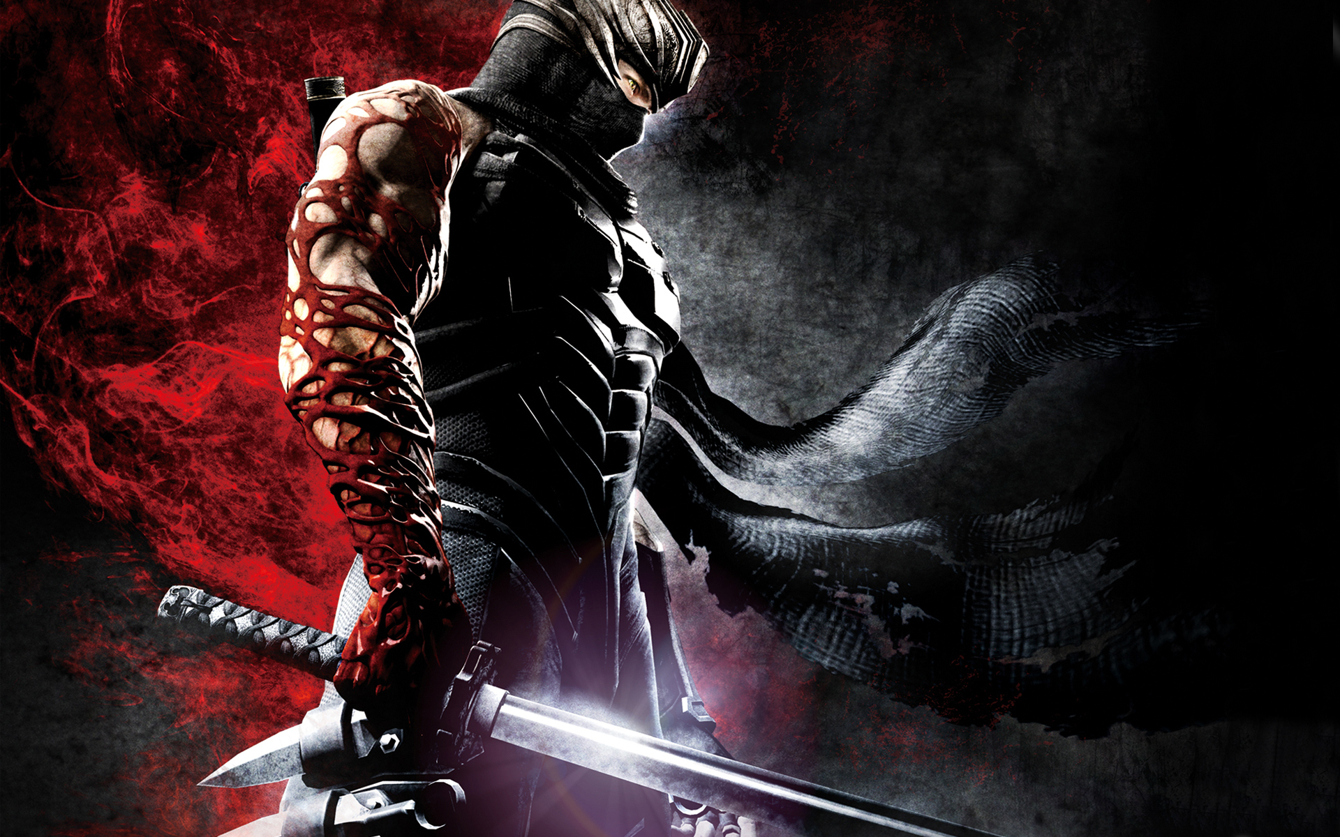 ninja gaiden wallpapers for desktop - photo #1