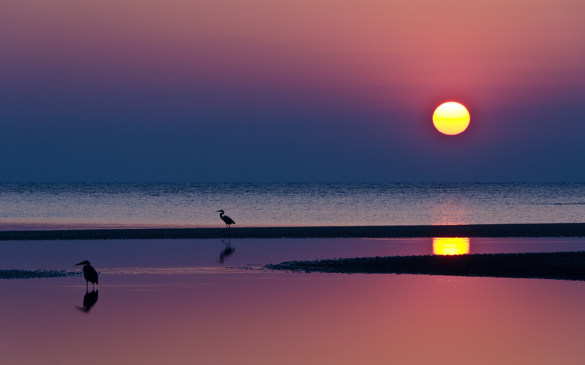pink sun and earth - photo #39