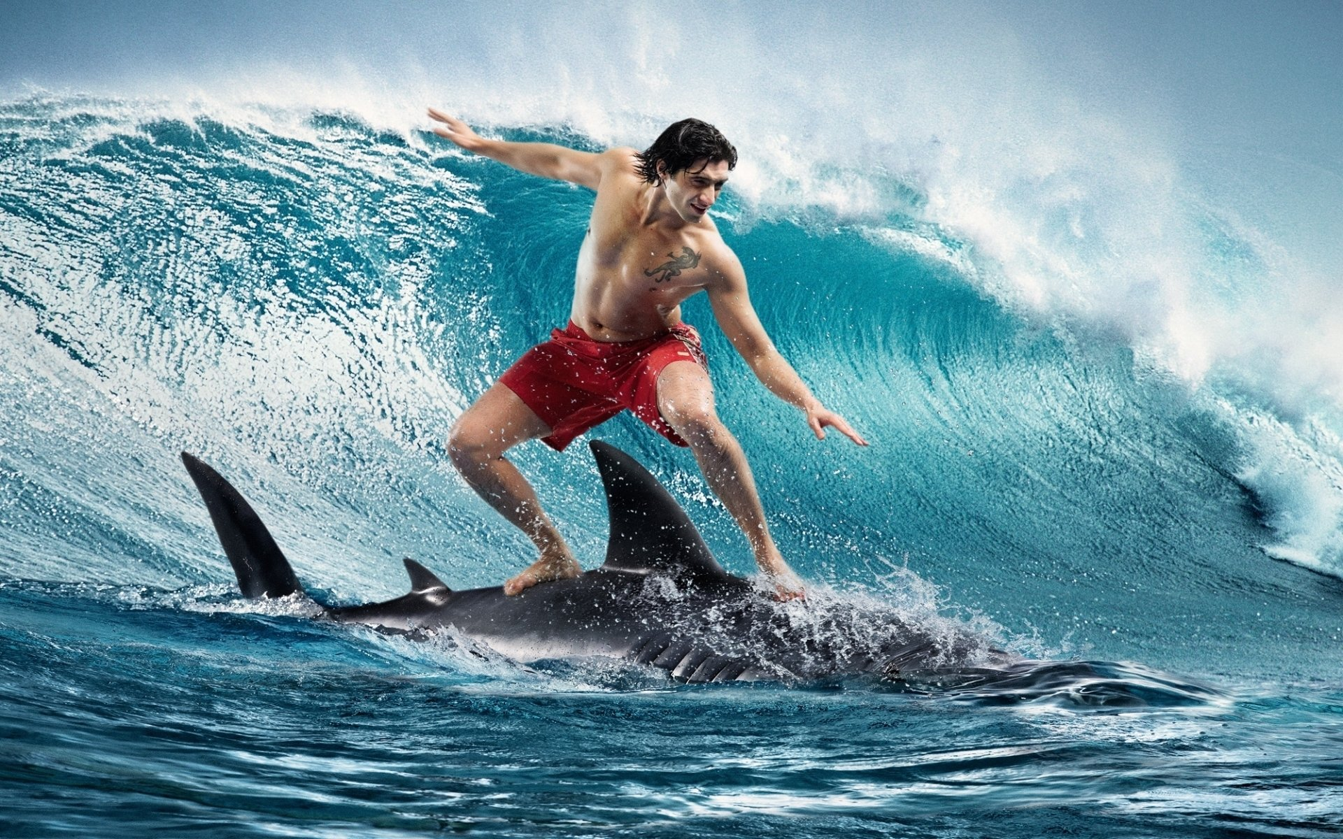203 Surfing Hd Wallpapers Background Images Wallpaper