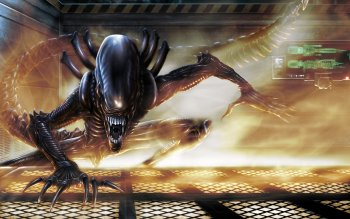 Movie - Alien Wallpapers and Backgrounds ID : 248520