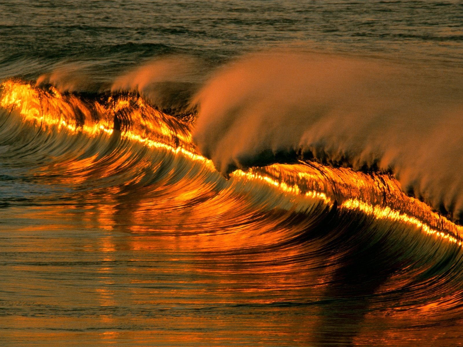 Earth - Wave  Thumbbig-74815 Nature Golden Ocean Wallpaper