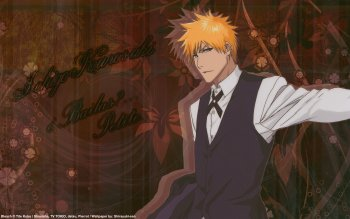 Anime - Bleach Wallpapers and Backgrounds ID : 261960