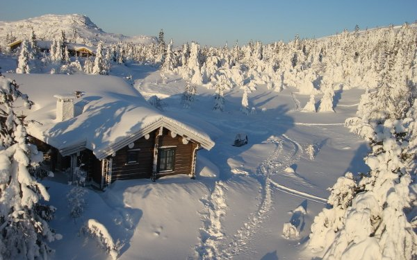 Photography Winter Mountain Snow Cabin House Place Tree HD Wallpaper | Background Image
