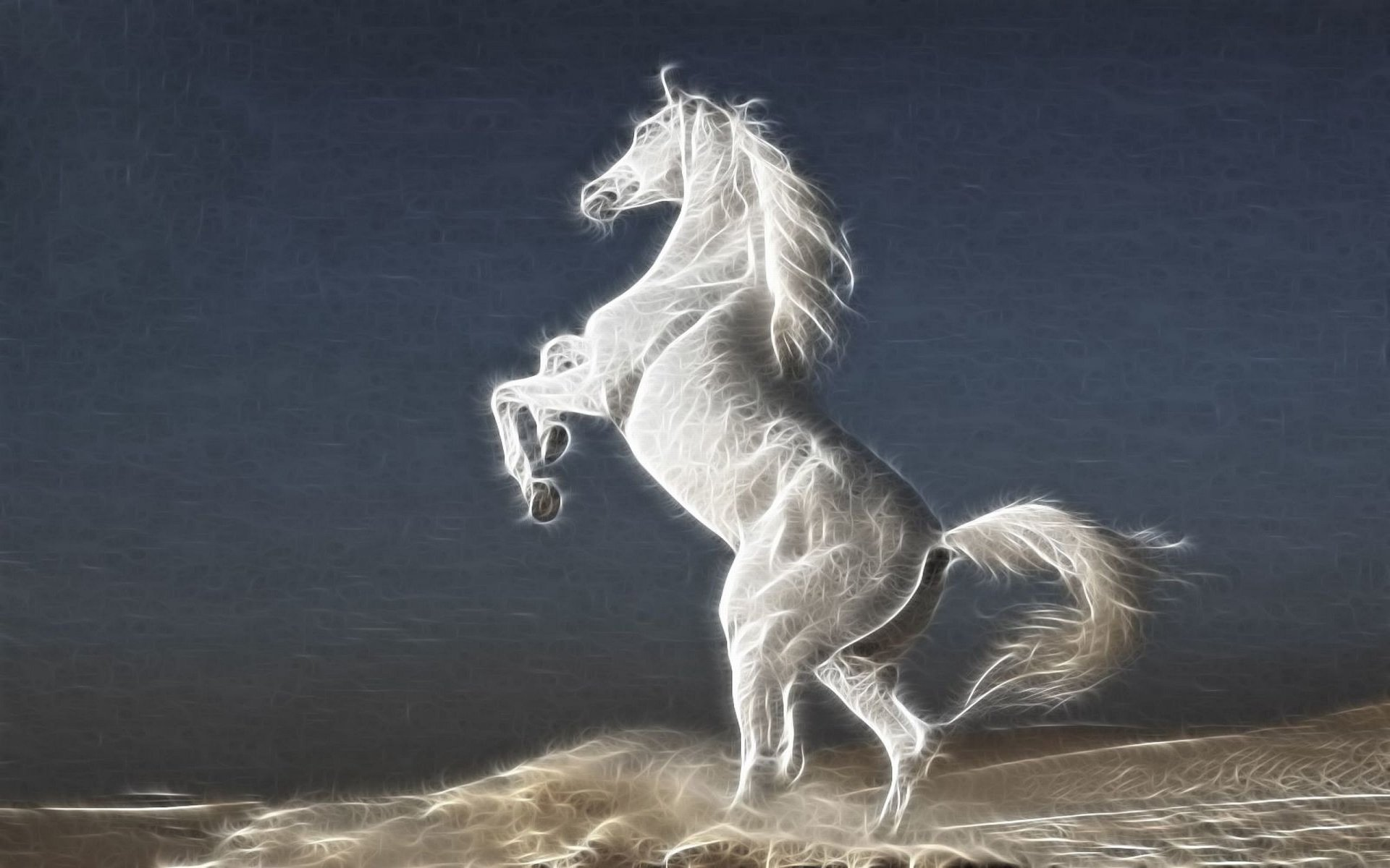 Animal - Horse  Animal White Stallion Fractal Wallpaper