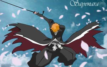 Anime - Bleach Wallpapers and Backgrounds ID : 264272