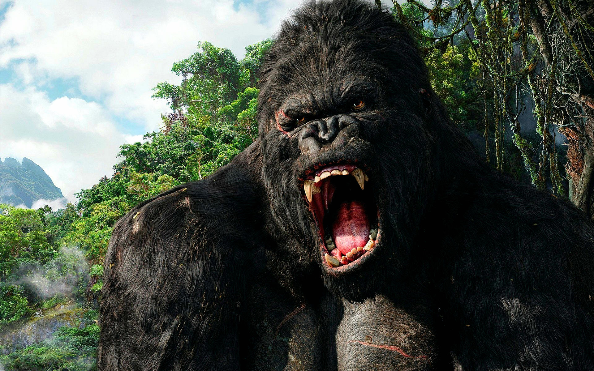 King kong 2005 full hd wallpaper and hintergrund - King kong 2005 hd wallpapers ...