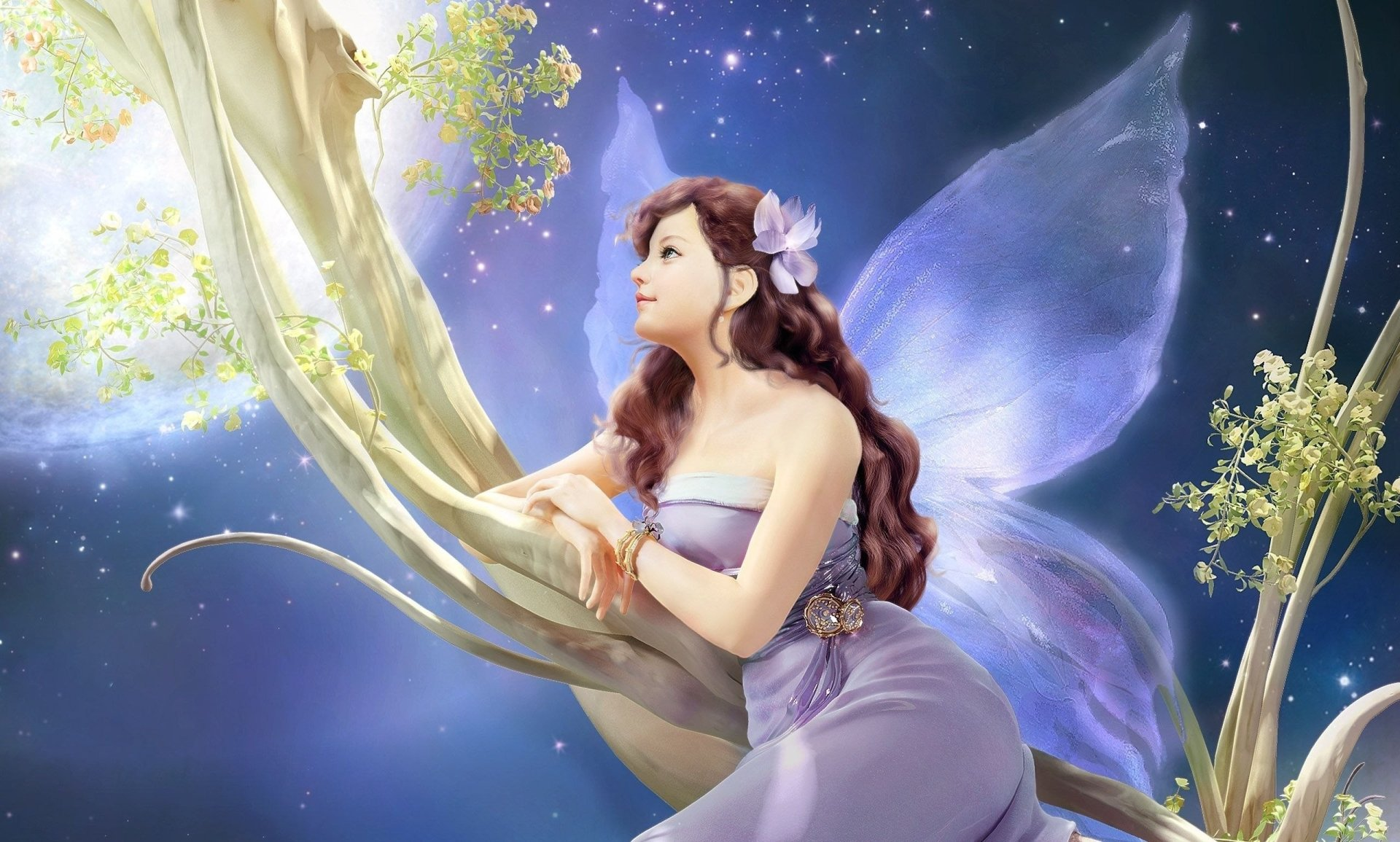 Wallpapers ID:270972
