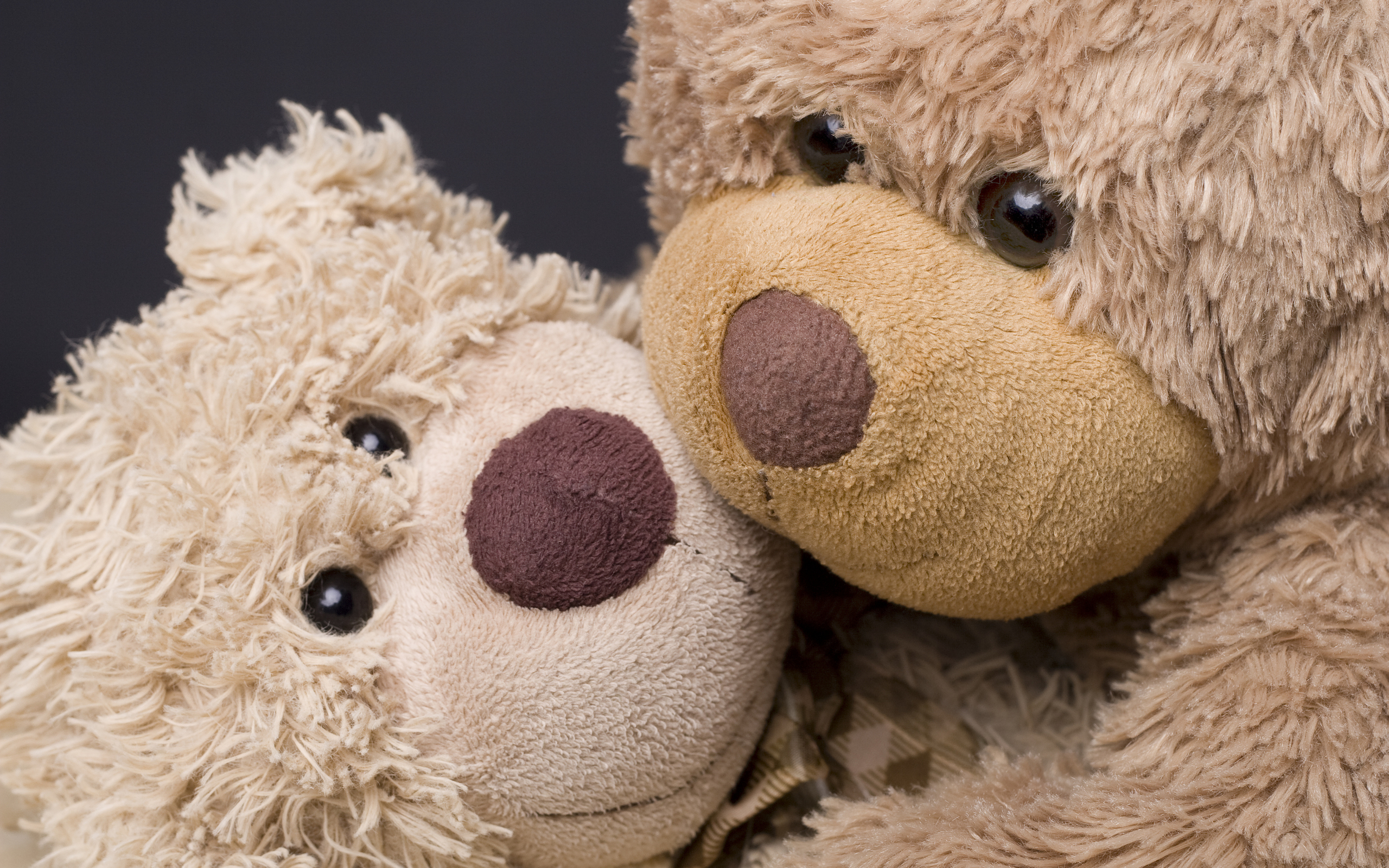 Teddy bears hd wallpaper background image 2560x1600 id 271162 wallpaper abyss - Free teddy bear pics ...