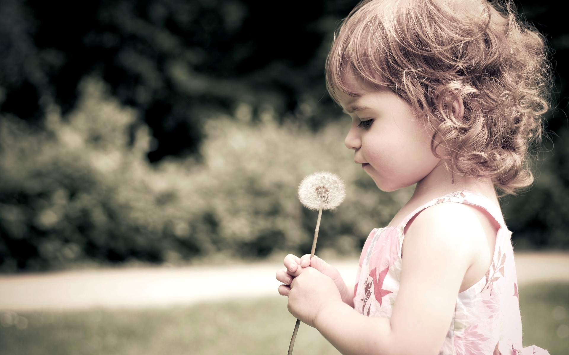 Baby full hd wallpaper and background image 1920x1200 id271510 photography baby girl child face little girl adorable dandelion wallpaper voltagebd Choice Image