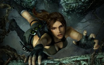 Video Game - Tomb Raider Wallpapers and Backgrounds ID : 271820