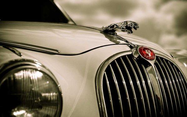 Vehicles Jaguar S-Type Jaguar HD Wallpaper | Background Image