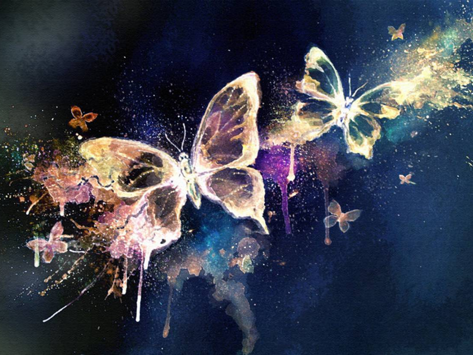 Magic Butterflies Wallpaper And Background Image