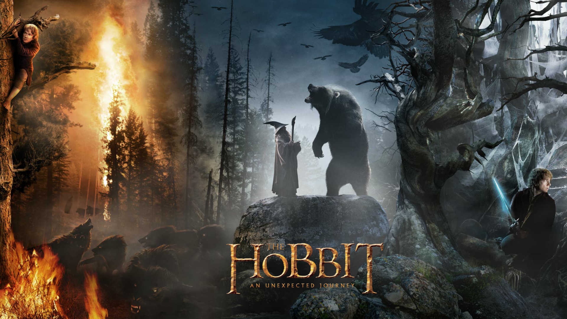 The Hobbit An Unexpected Journey Full HD Wallpaper And Background