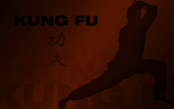 Sports - Martial Arts Wallpapers and Backgrounds ID : 286390