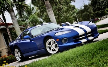 Vehicles - Dodge Wallpapers and Backgrounds ID : 30602