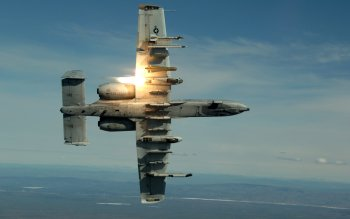 Military - Fairchild Republic A-10 Thunderbolt II Wallpapers and Backgrounds ID : 33112