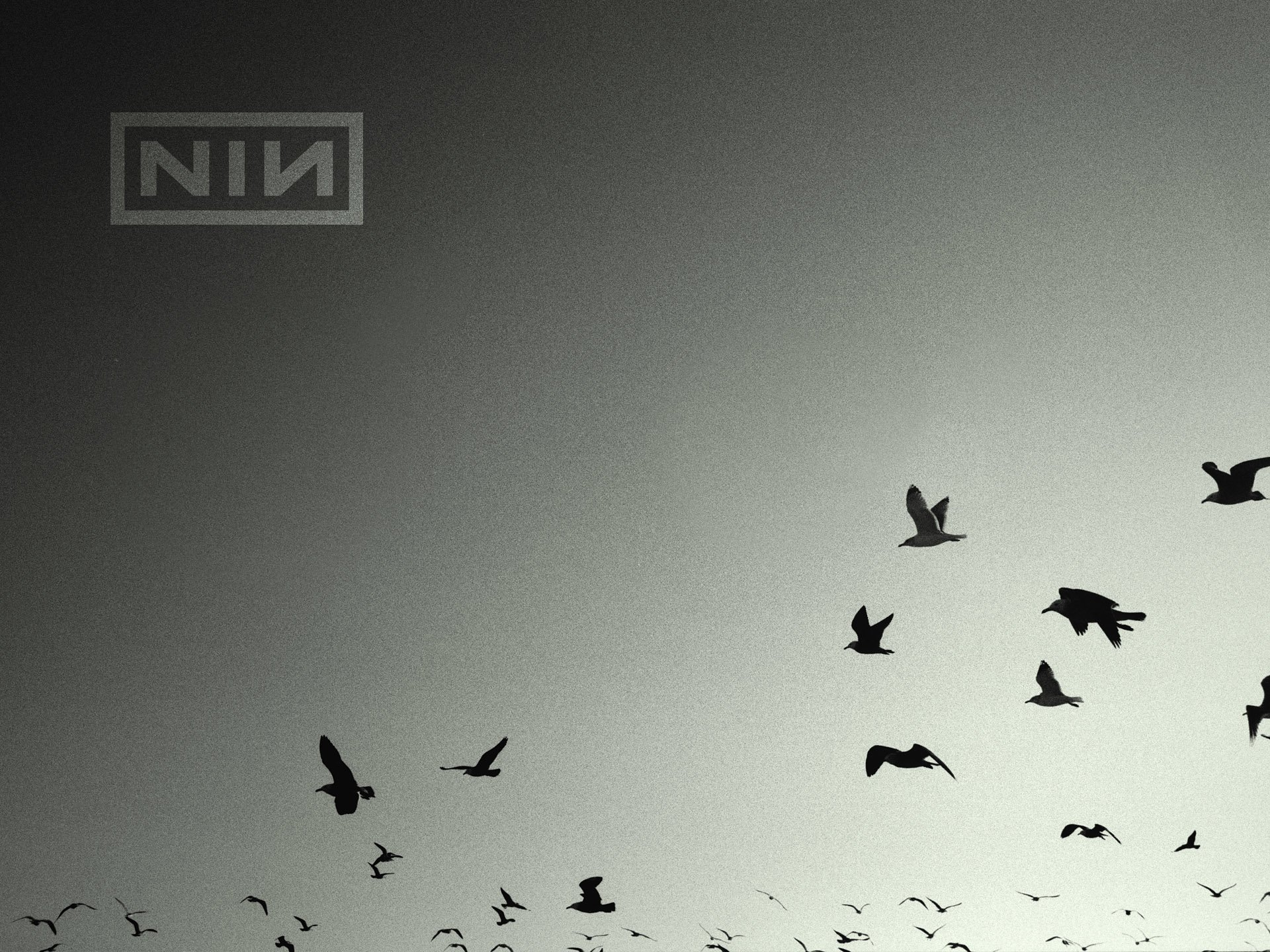 85 Nine Inch Nails Hd Wallpapers Background Images Wallpaper Abyss