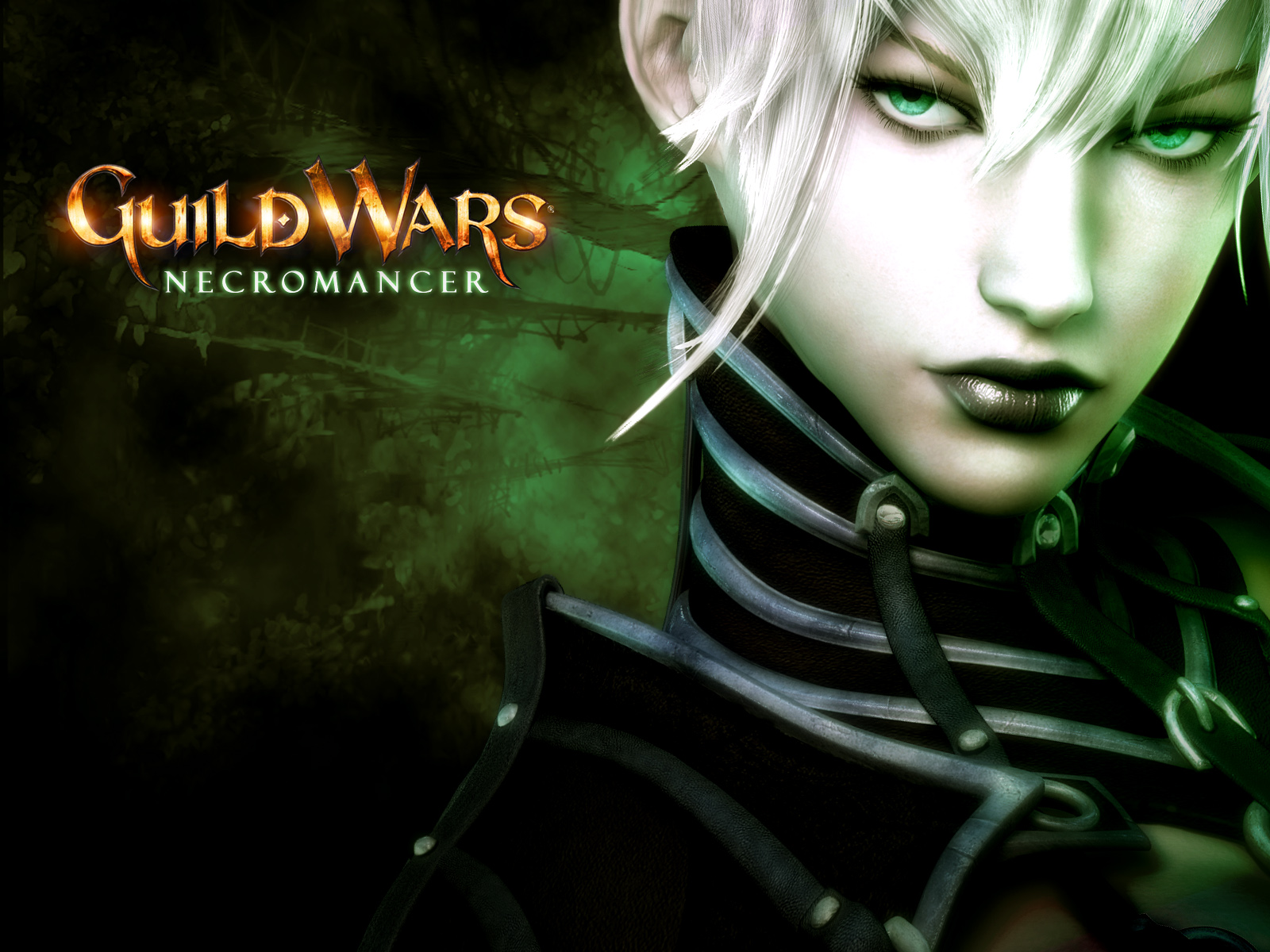 Video Game - Guild Wars  Wallpaper