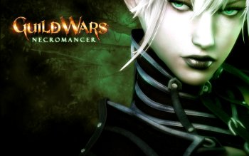 Компьютерная игра - Guild Wars Wallpapers and Backgrounds ID : 38910
