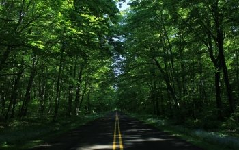 Man Made - Road Wallpapers and Backgrounds ID : 435472