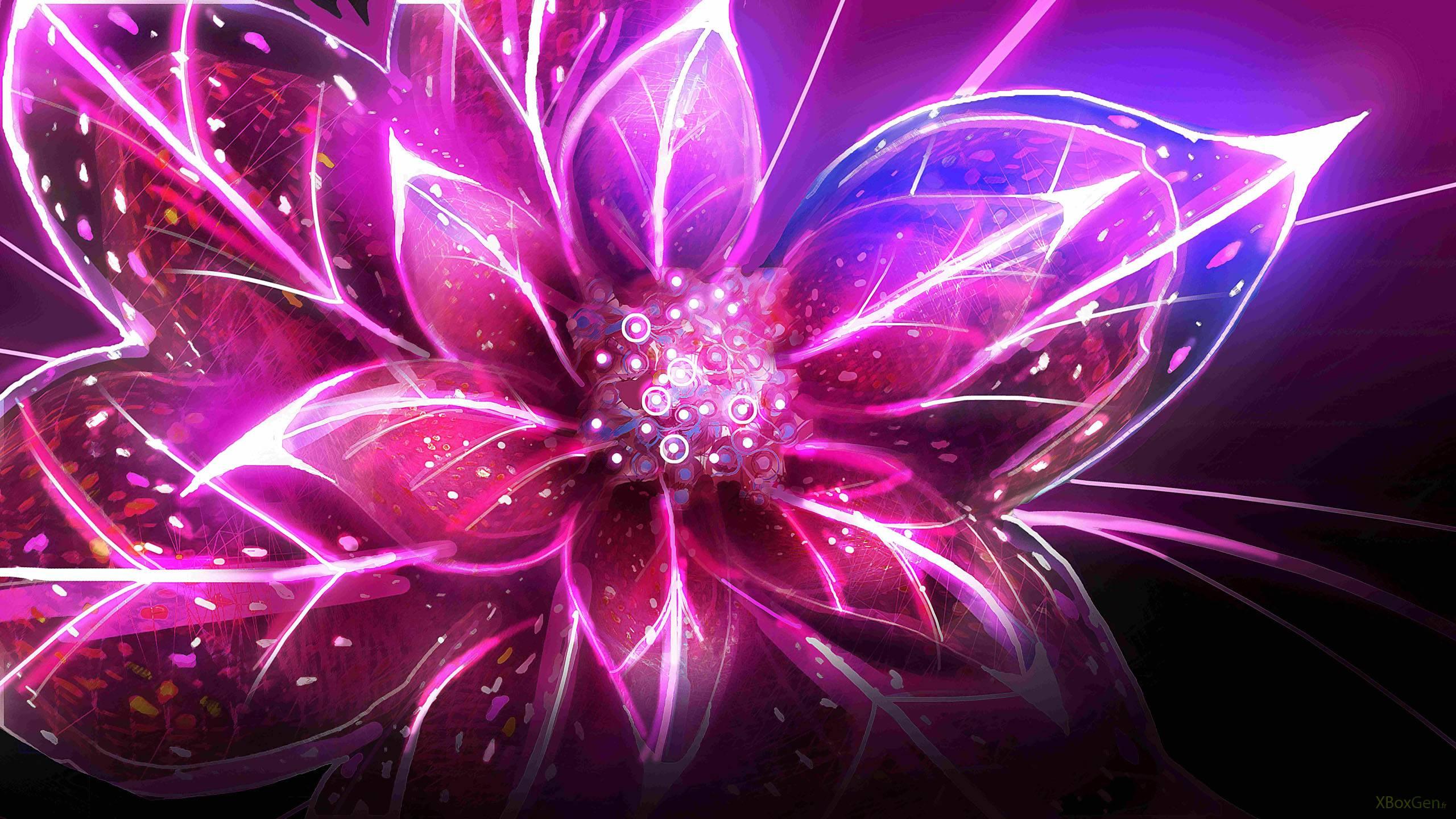 Flor fondo de pantalla hd fondo de escritorio for Bajar fondos de pantalla que se mueven