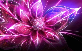 Earth - Flower Wallpapers and Backgrounds ID : 436385