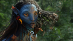 Preview Avatar