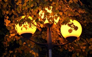Man Made - Lamp Post Wallpapers and Backgrounds ID : 440494