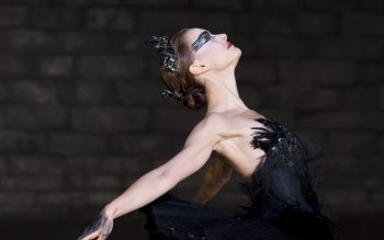 Película - Black Swan Wallpapers and Backgrounds ID : 440943