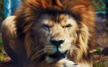 Animal - Lion Wallpapers and Backgrounds ID : 441746
