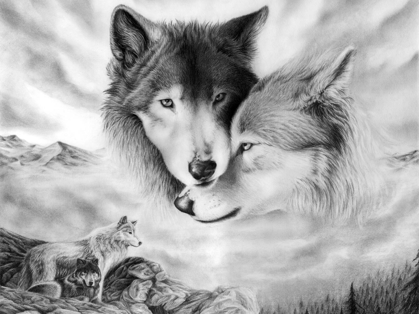 Downlaod wolf new hd wallpapers for desktop pc Animited