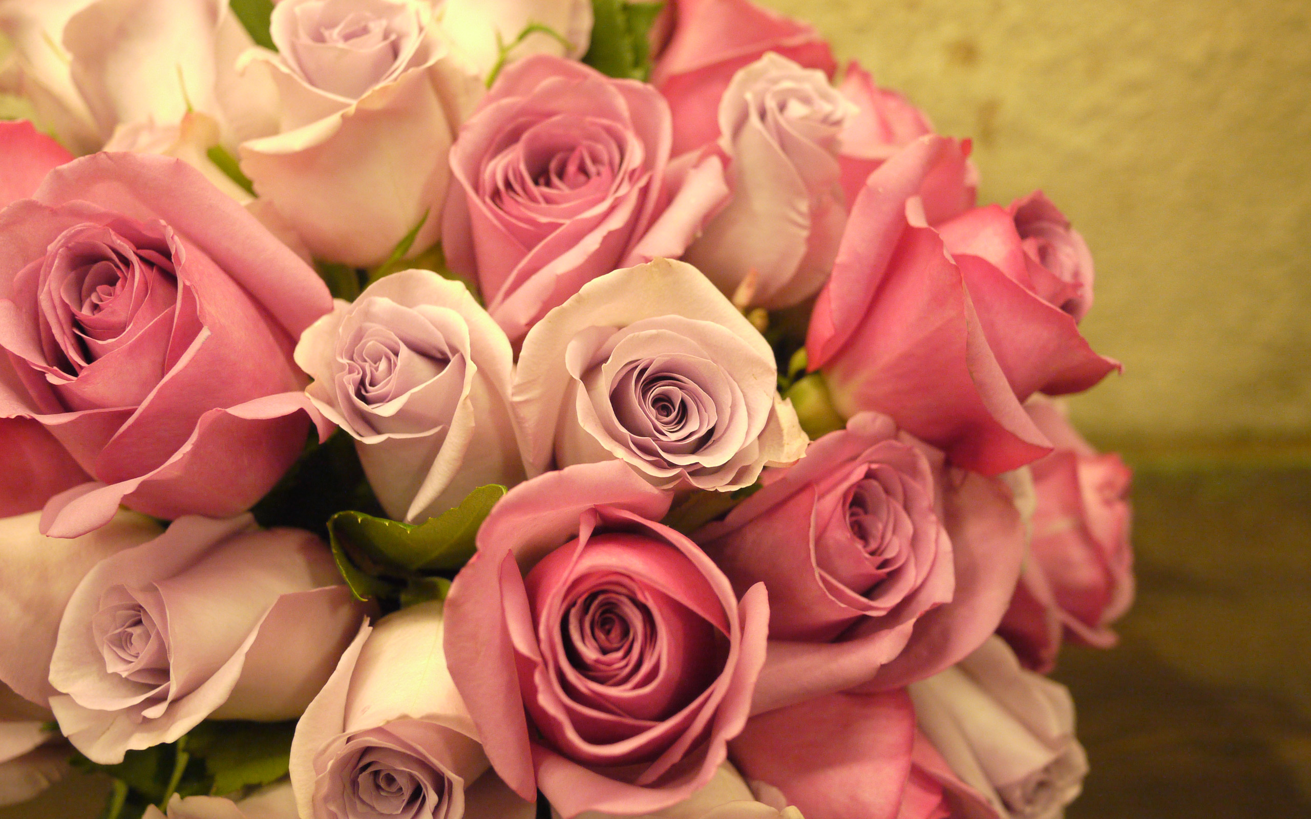 Rose full hd wallpaper and background image 2560x1600 id 443288 - Ramos de flores hermosas ...