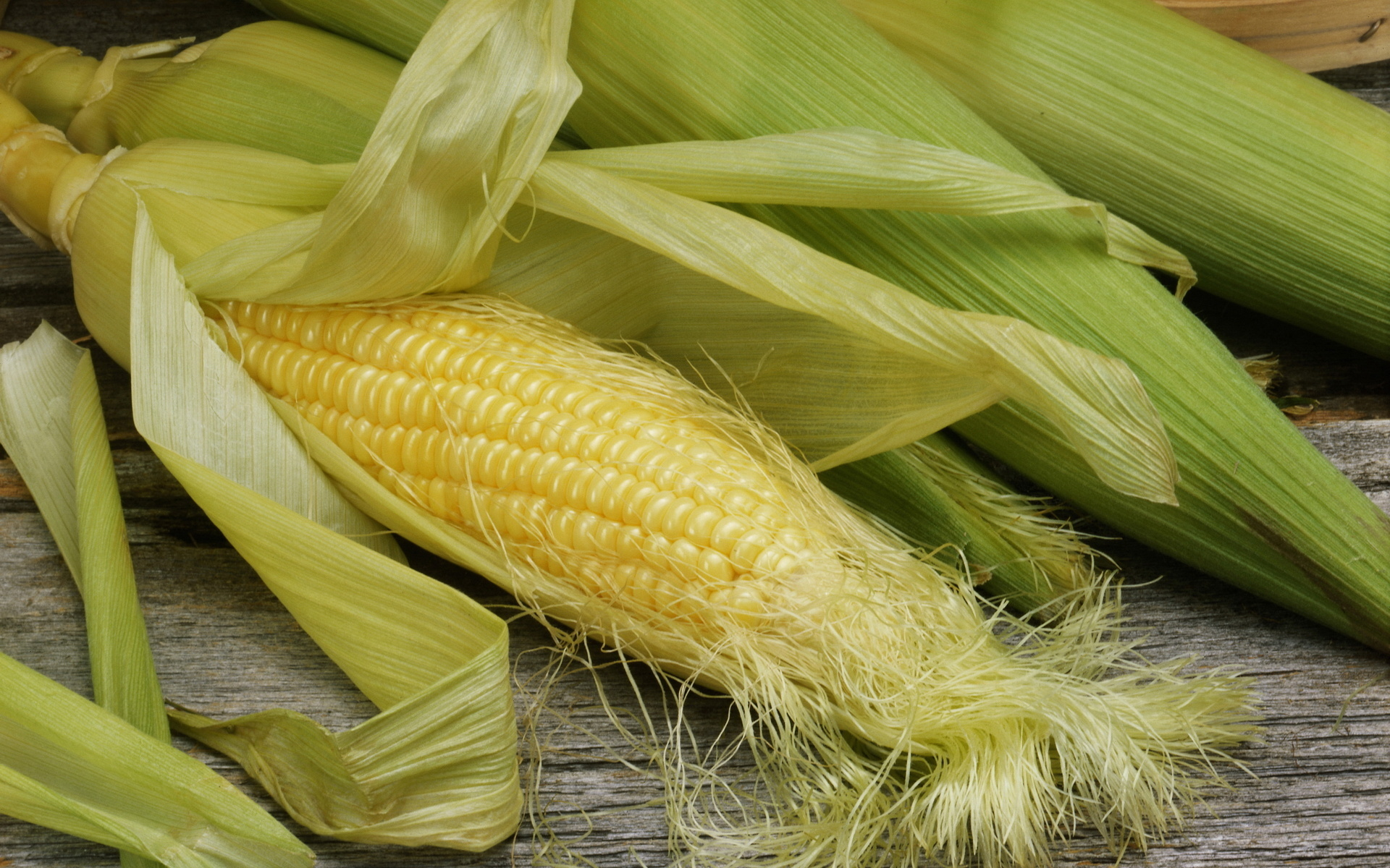 Corn Full HD Wallpaper And Background Image
